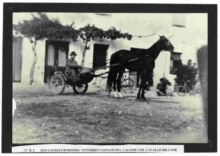 Vittorio Canciani sul calesse col cavallo Bill