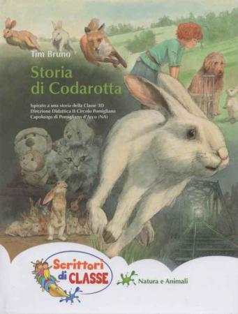 Storia di Codarotta
