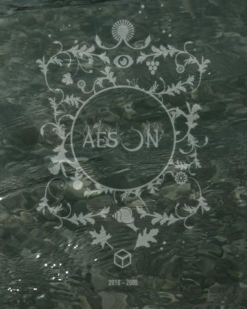 Aeson 2018/2008